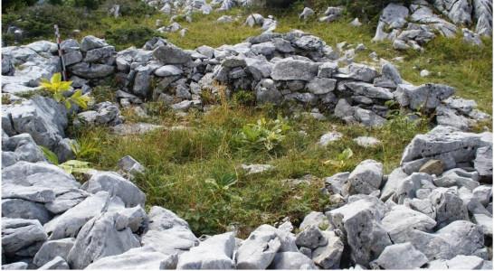 Des scientifiques sur le plateau des Glières : paysages et implantations humaine
